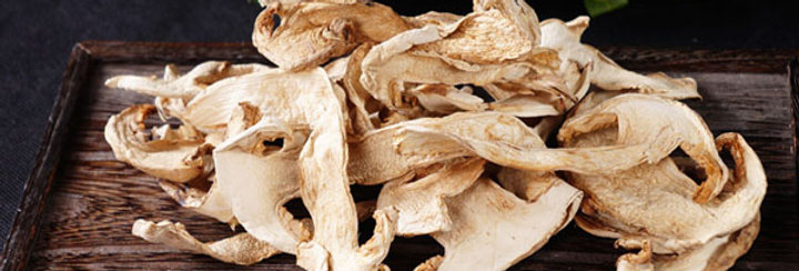 Tricholoma Matsutake(Frozen/Dried) 松茸(冷冻/干)