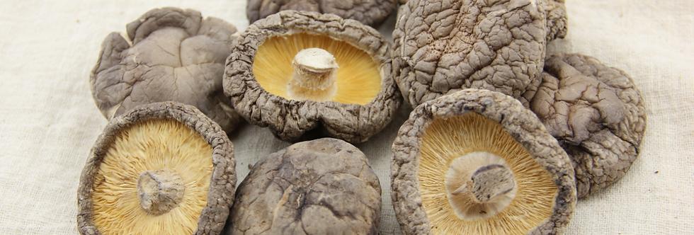 Dried China Mushroom 中国菇