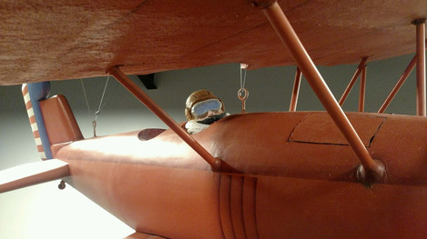 Airplane from the rafters