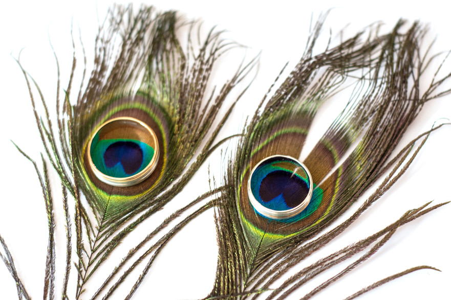 Wedding Photographer Birmingham, Civil ceremony Photographer, close up image of the rings on peacock feathers