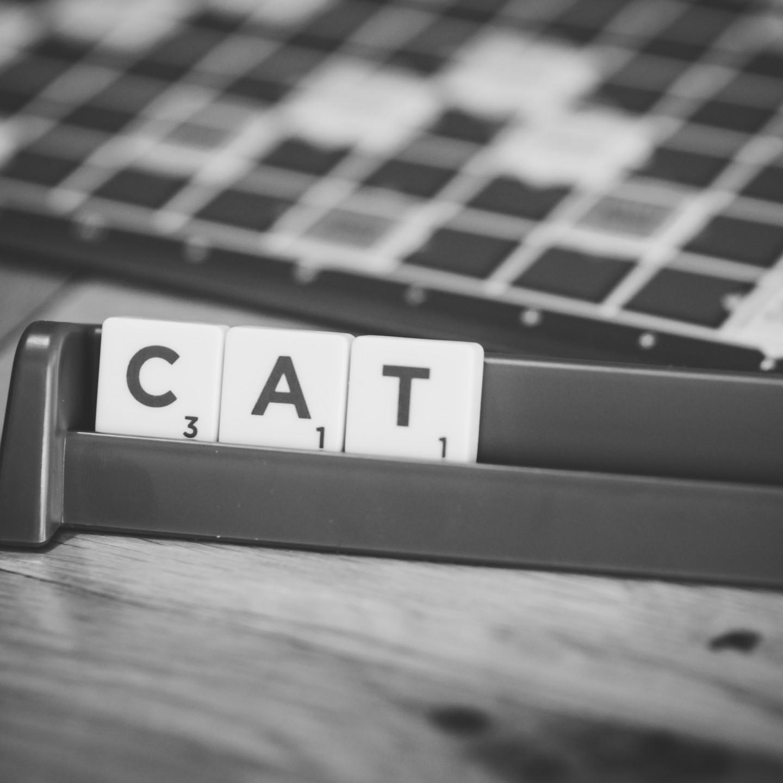 Family Photographer Birmingham, Close up black & white photo of the word CAT, scrabble