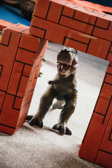 Lifestyle Photographer Birmingham, close up image of a dinosaur to go with a photo series of children with autism