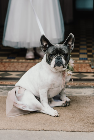Hampton Manor Solihull, Wedding photographer Solihull