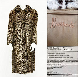 Ocelot Furrier Fur Coat & CITES