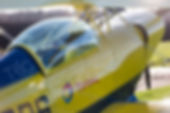 AerobaticExperiencePitts.JPG