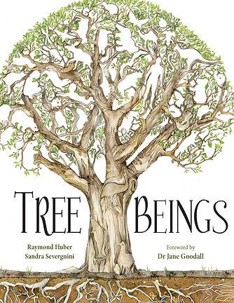 tree bings.jpg