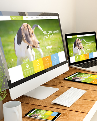 DT- NW- Web Design - 1.png