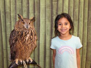 owl school pic.jpg