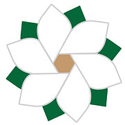 MR logo icon (1).jpg