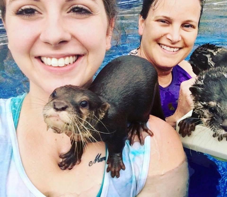 Otter Swim.jpg