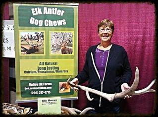 Elk Antler Discount