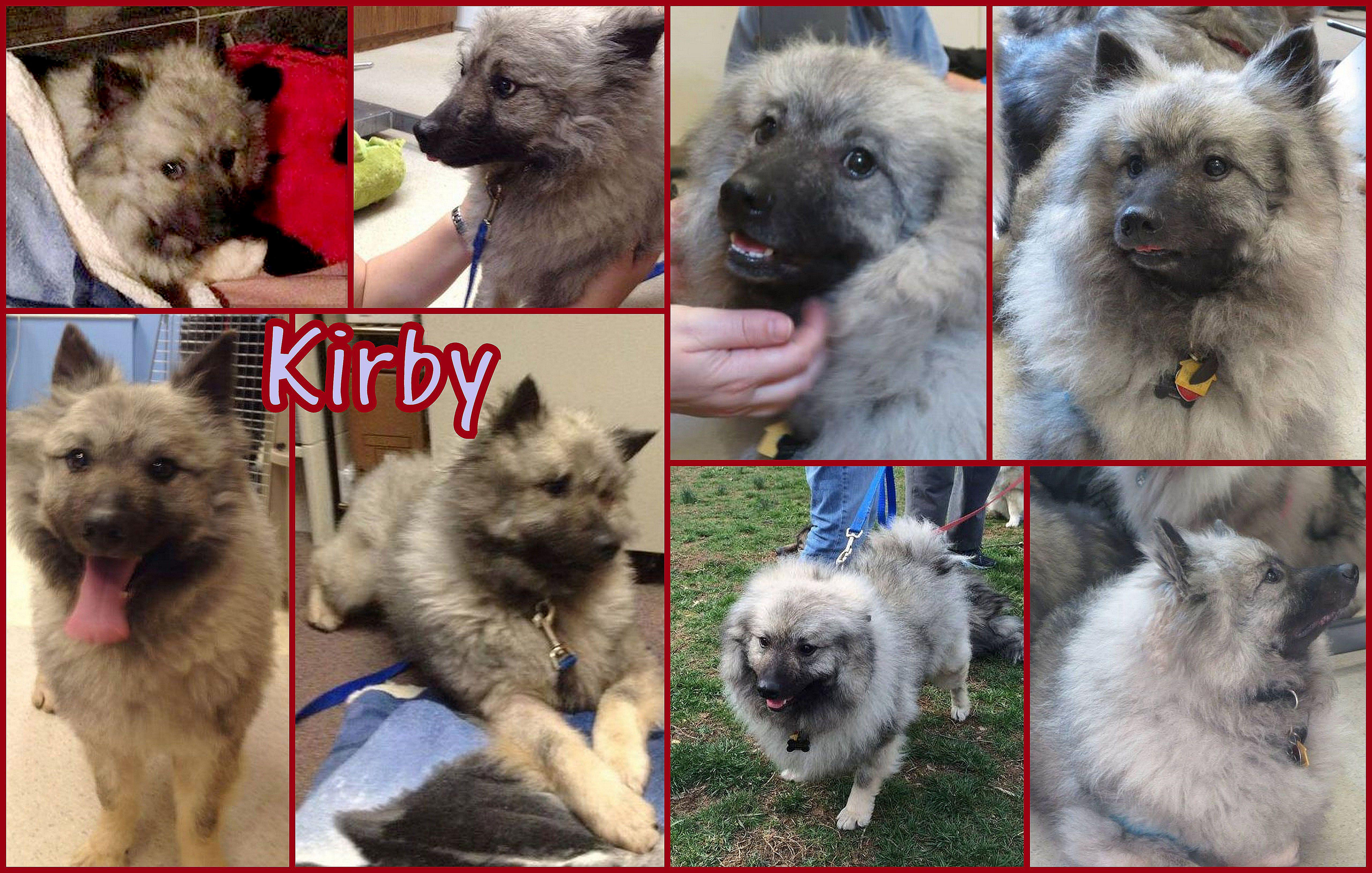 Comet-Kirby