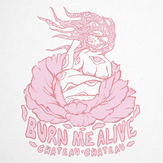 New release: US Indie Pop band Chateau Chateau - Burn Me Alive (single)