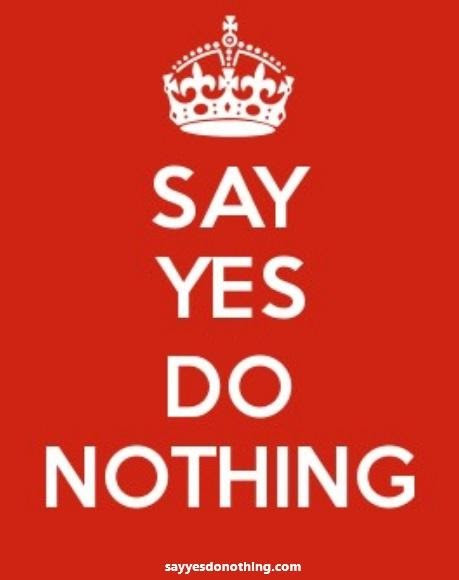 SAY YES, DO NOTHING BIOGRAPHY AND REVIEWS