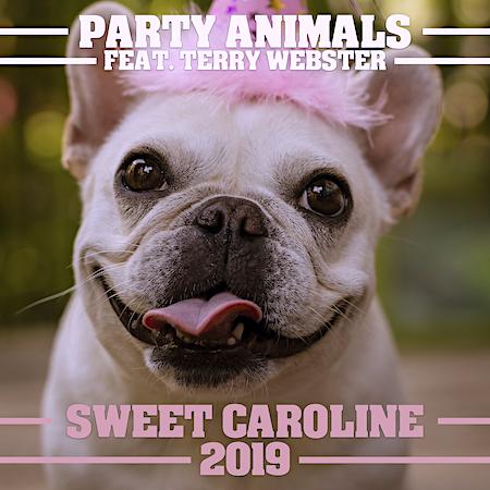Party Animals Ft Terry Webster - Sweet Caroline (2019 Xmas Mixes) Pop Dance