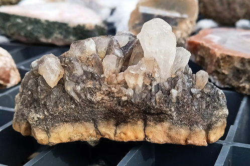 Crystal Cluster from Coyote Creek at Sunflower Flats
