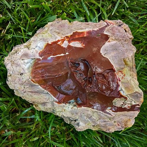 7.5 lb Brown Opal Thunderegg, Skookum Creek