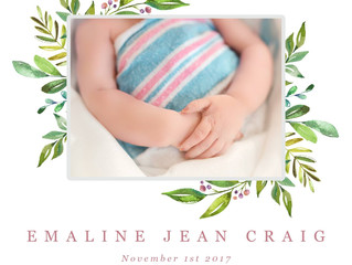 Emaline Jean, forever in our hearts 11/1/17