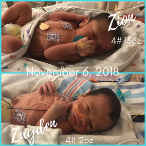 fort myers doula twins