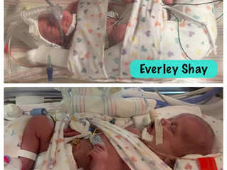 Birth Announcement: Twins! Everley Shay and Ellerie Drew