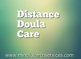 Doula Package #2: Distance Doula Care