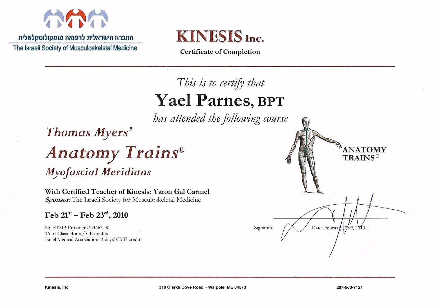 Anatomy Trains  - Myofacial Merians_edited