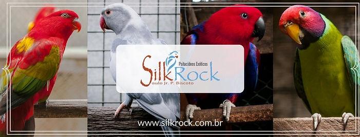 Arte Silkrock.jpg