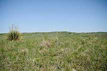 Sandhills Eco Region Taylor, NE