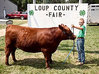 Loup County Fair  Taylor, NE