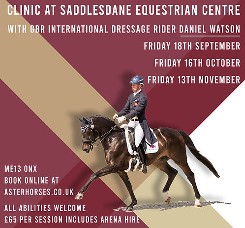 Clinic at Saddlesdane Equestrian Centre