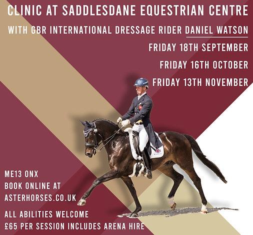 Clinic at Saddlesdane Equestrian Centre