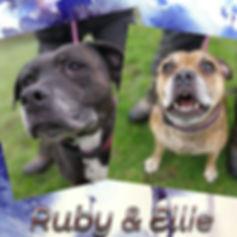 Ruby & Ellie