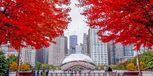 fall photos of Chicago's bean sculpture