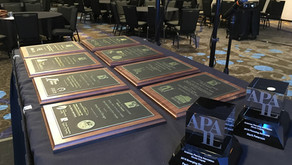 Call for 2020 APA-IL Awards Program Nominations!