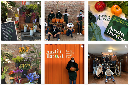 collage of Instagram photos from Austin Harvest