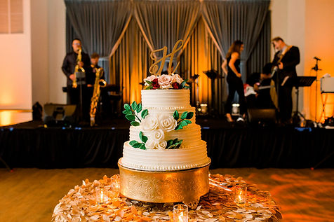 L C WEDDING-Reception-0090.jpg