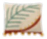COUSSIN PALM - LORENA CANALS.png