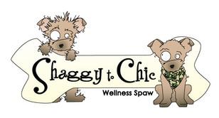 LOGO_SHAGGY_TO_CHIC_WEB.jpg