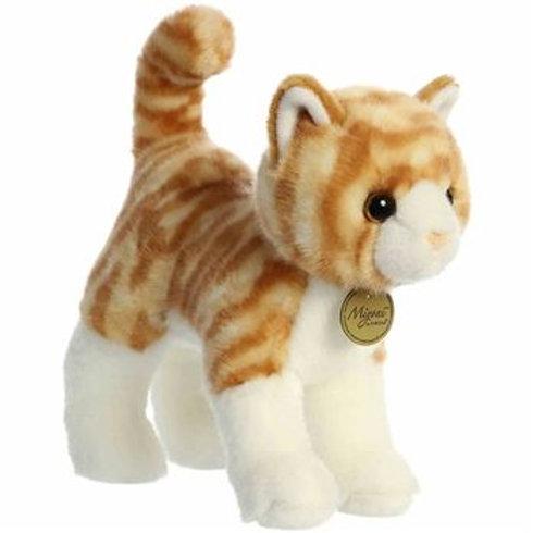 Chat tigré orange et blanc