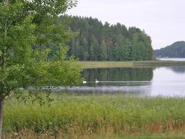 Renkitupa sijaitsee aivan Pyhäjärven rannalla.