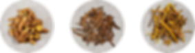 201809_YI_Autumn_Baegayul-06.png