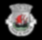 Logo Peniche.png