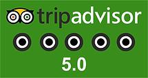 Trip Advisor 1.png