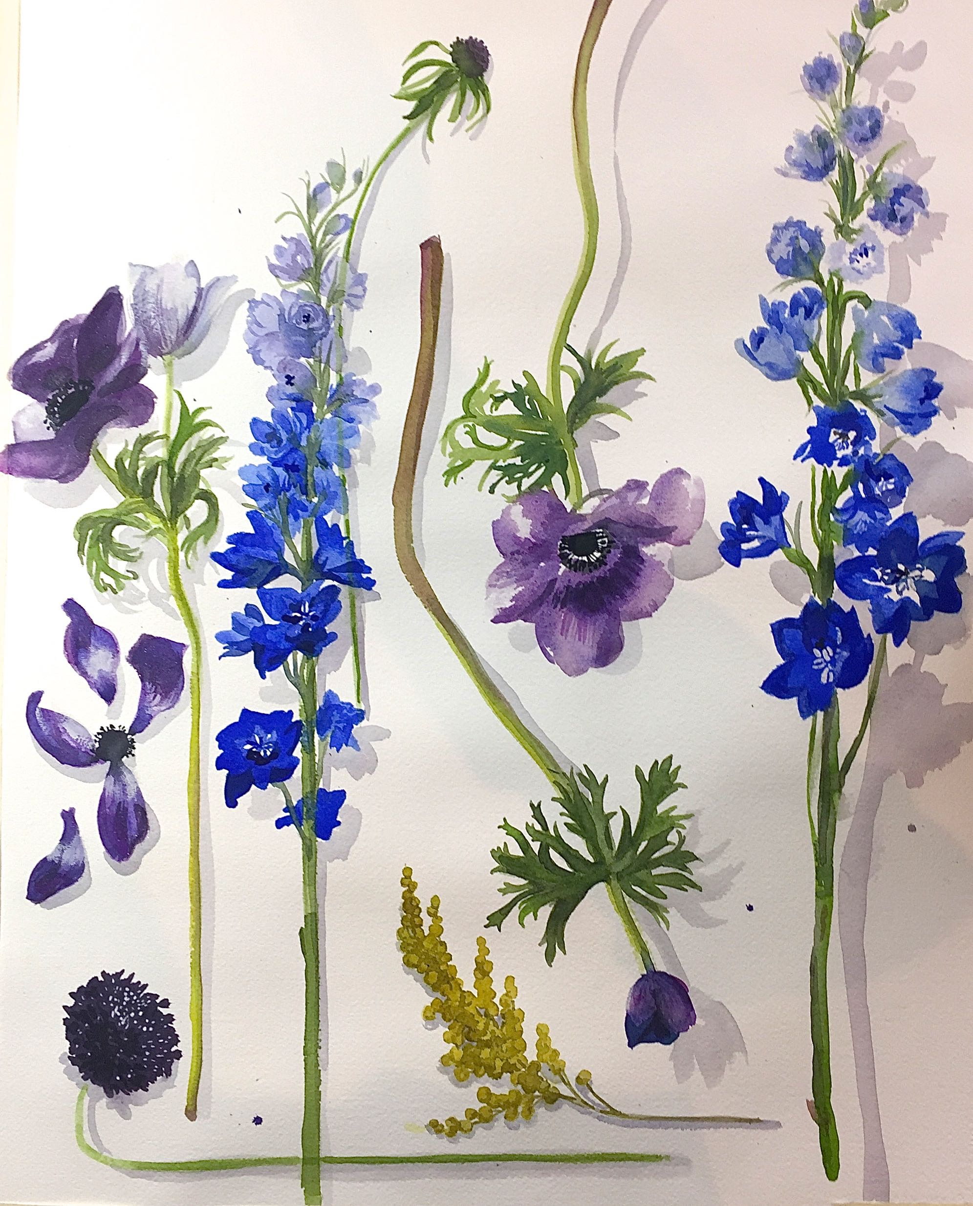 Study of Blue Flowers