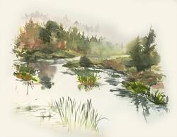 So Creek