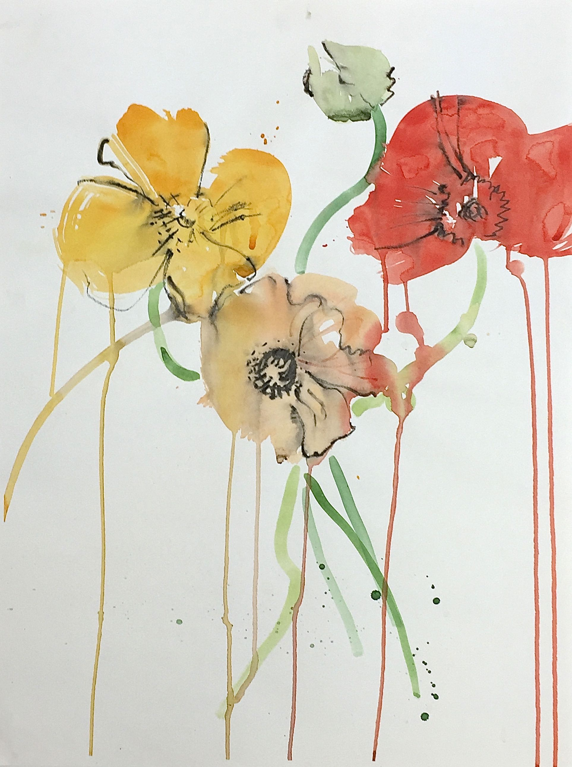 Three Poppies and a Bud 18_x24_ watercoor and graphite