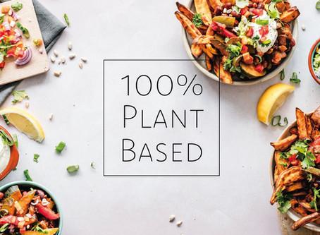 100% PLANT BASED ケータリング事業スタート