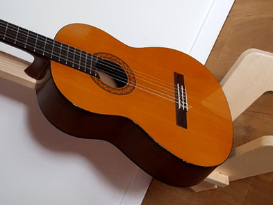 Porte-guitare