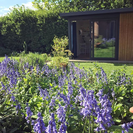 My treatment room surrounded by bluebells.