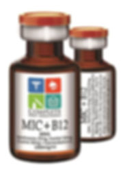 MIC B12.jpg